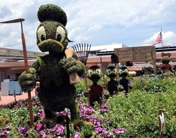 Bushes shaped like Donald Duck make an appearance at the Epcot Flower and Garden festival.